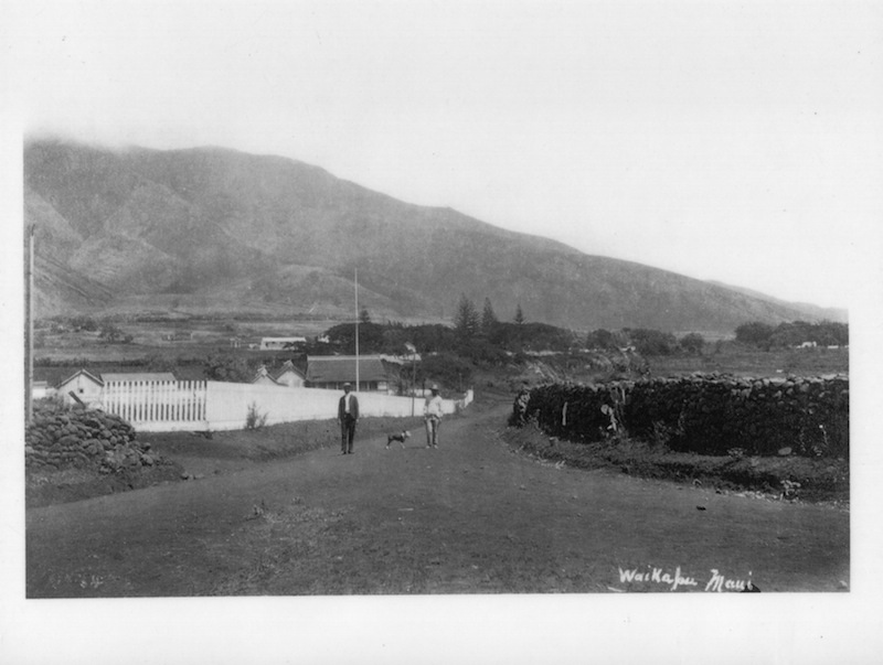 Another view of old Waikapū in West Waikō area.